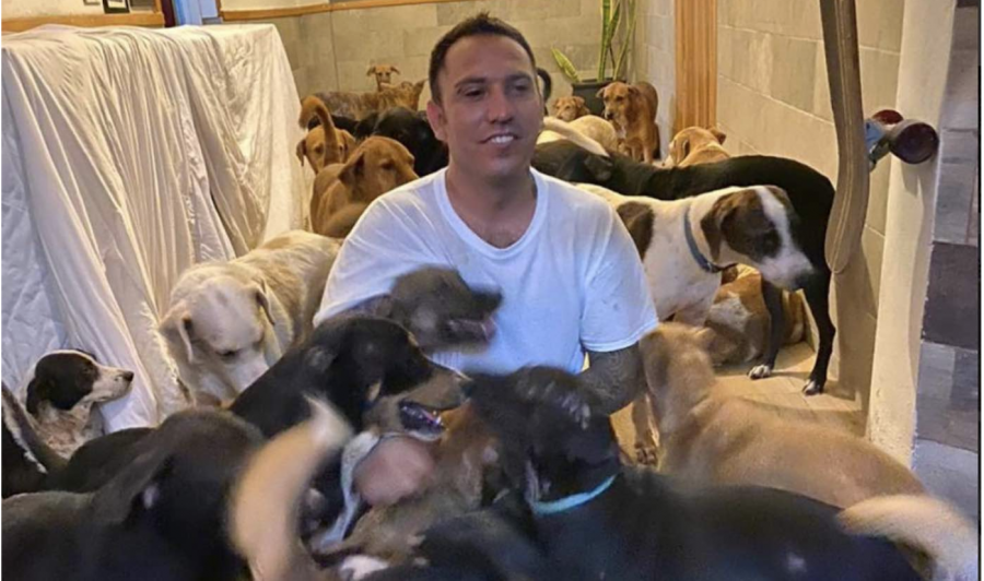 Hero Takes in 300 Dogs During Hurricane